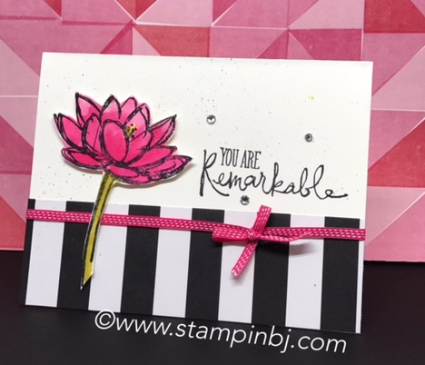 Remarkable You, Stampin' Up!, Watercoloring, #remarkableyou, #stampinup, #stampinbj.com, #bjpeters, #watercoloring, #popofpink, #stampinupdemonstrator, #handstampedcard, #rubberstamping