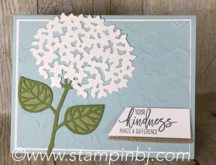 Thoughtful Branches, Watercolor Wash, Stampin' Up!, BJ Peters, #thoughtfulbranches, #watercolorwash, #stampinup, #bjpeters, #stampinbj.com, #beautifulbranches, Beautiful Branches
