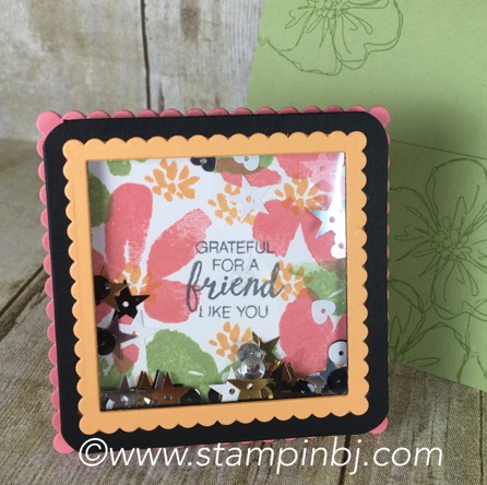 Penned & Painted, Stampin' Up!, BJ Peters, #penned&painted, #shakercards, #stampinup, #bjpeters, #stampinbj.com, #onlinecraftingclass, #stampinupclass