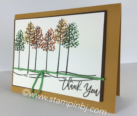 Thoughtful Branches, Stampin' Up!, BJ Peters, #stampinbj.com, #thoughtfulbranches, #stampinup