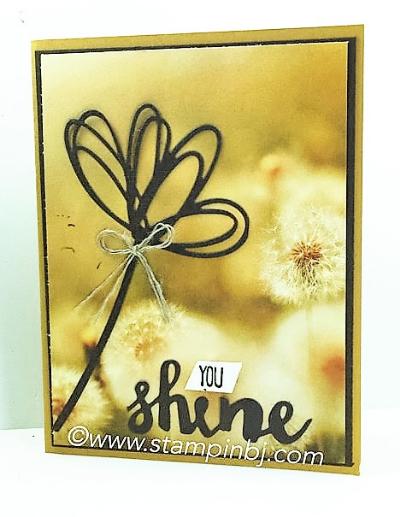 Sunshine Wishes, Stampin' Up!, BJ Peters, Serene Scenery, #sunshinewishes, #serenescenery, #stampinup, #stampinbj.com
