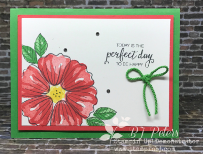 Bunch of BLossoms, Stampin' Up!, BJ Peters, #bunchofblossoms, #stampinup, #stampinbj.com, #bjpeters, #birthdaycard, #stampinupdemonstrator, #handstampedcard, #2stepstamping