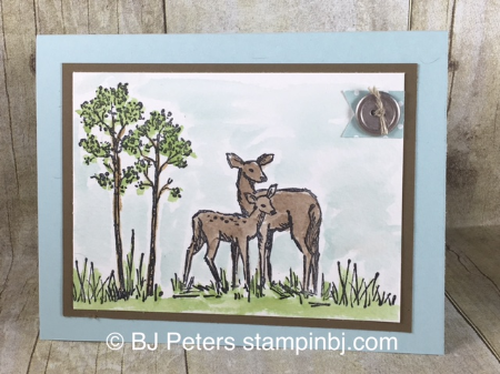 In the Meadow, Watercoloring, Stampin' up!, BJ Peters, #stampinbj, #bjpeters, #watercoloring, #masculine card