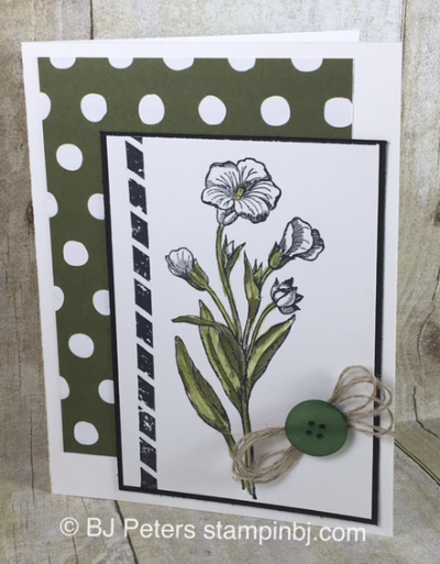 Butterfly Basics, watercoloring, Stampin' up!, BJ Peters, #bjpeters, #stampinbj